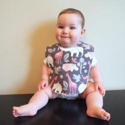 minky Baby bib girl pink grey safari giraffe hippo elephant frogs snap